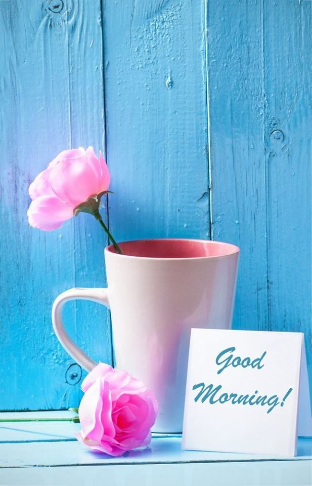 Good morning my beautiful sweetheart You are so sweet I didn't have a chance  You are my everything I LOVE YOU SO VERY MUCH