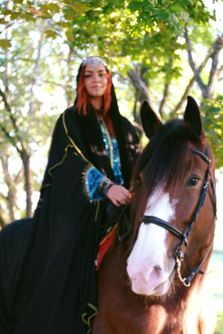 #shire #horse #drafthorse #lady #of #fire #gypsy #queen