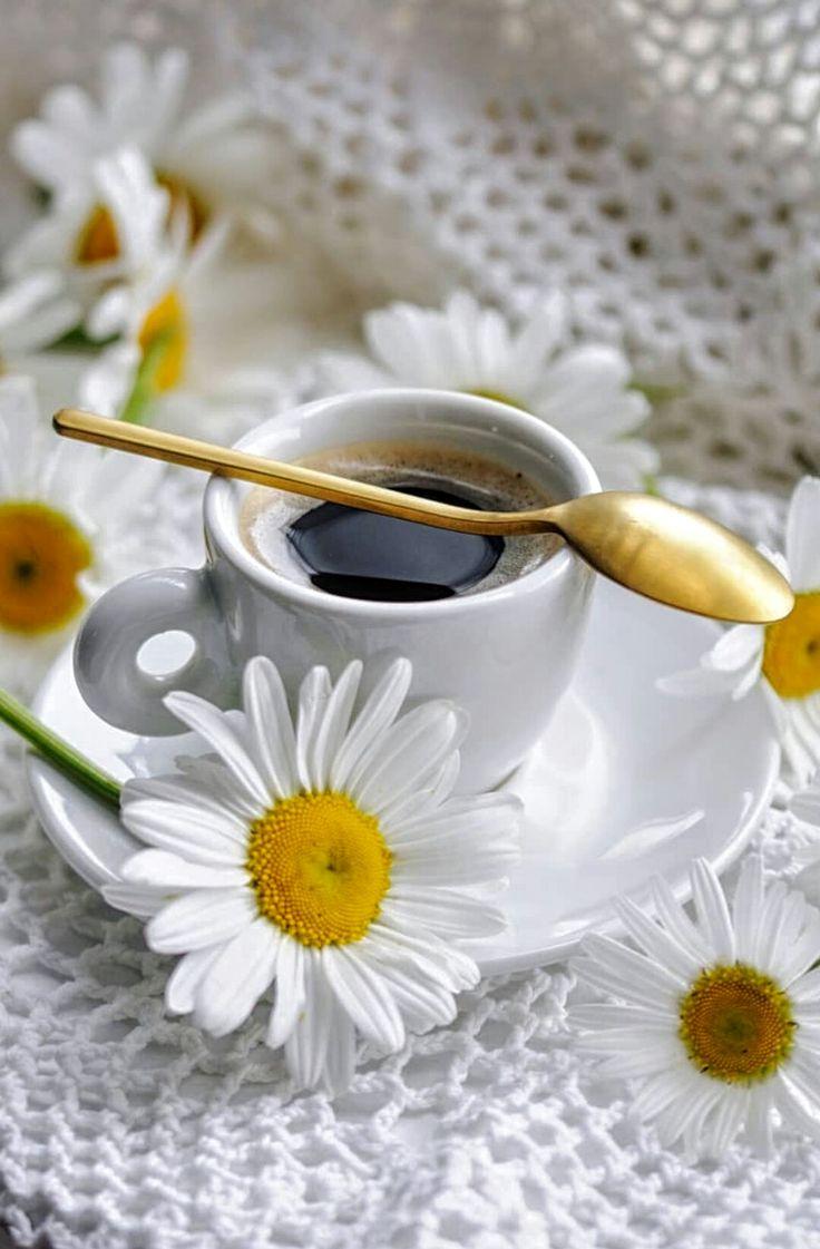 Фото кофе с ромашками
