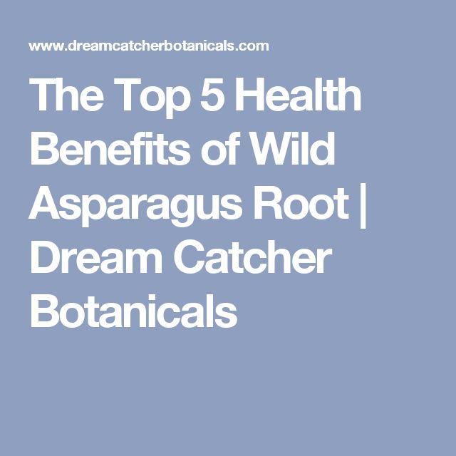 The Top 5 Health Benefits of Wild Asparagus Root | Dream Catcher Botanicals