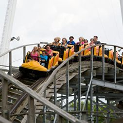 1000 images about roller coasters on pinterest gardens roller coasters and atlantis for Busch gardens height restrictions