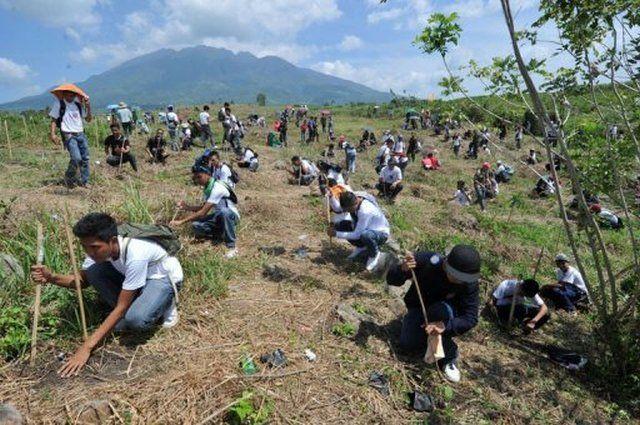 Νέο ρεκόρ Γκίνες: 66 εκατομμύρια δέντρα σε 12 ώρες!