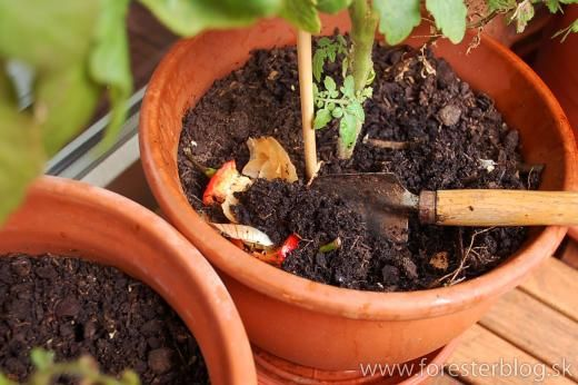 Easier way to compost foodwaste