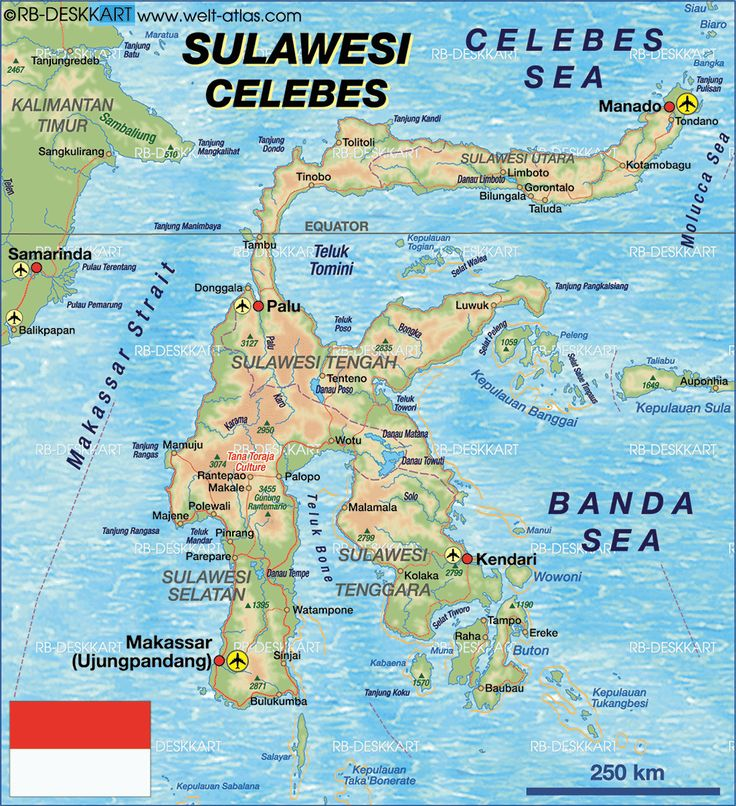My summer mission-small island to the bottom right called Buton (Indonesia)