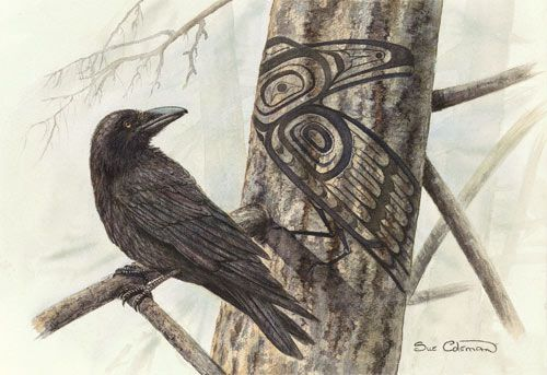 Raven Shadow- Sue Coleman