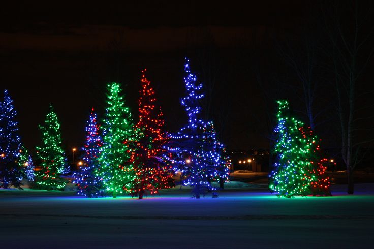 christmas lights photos | ... Christmas light displays. So, a few nights ago, we made the most of a