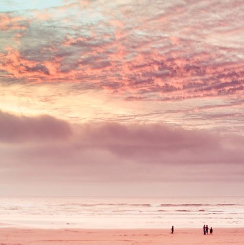 : Pink Sunsets, Pink Sky, Pink Beaches, Beautiful Sky, Sea, Pink Cloud, Pastel Colors, Beaches Sunsets, Heavens