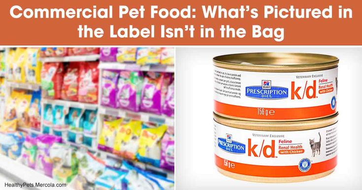 Degenerative diseases are soaring, so you need to know how to protect your pet and help them thrive - don't fall for these processed pet food gimmicks, at the expense of your pet's health and your wallet. https://healthypets.mercola.com/sites/healthypets/archive/2018/02/10/science-behind-pet-food-products.aspx?utm_source=petsnl&utm_medium=email&utm_content=art1&utm_campaign=20180210Z1&et_cid=DM184617&et_rid=209829496