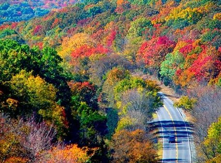#Lake Tenkiller State Park and the surrounding area come alive with vibrant hues of #fall colors as the leaves change in eastern #Oklahoma.