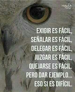 Como Dice La Vida  Quotes in Spanish