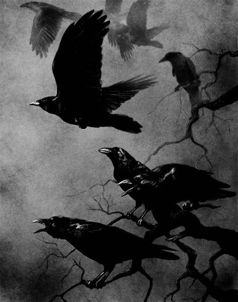 """It is the power of the unknown at work, and something special is about to happen. Crow is also the guardian of ceremonial magic and healing. Crow guides the magic of healing and the change in consciousness that will bring about a new reality and dispel """"dis-ease"""" or illness. You can rest assure when ever crows are around, magic is near by and you are about to experience a change in consciousness. Crow can give you the courage to enter the darkness, Crow is a omen of Change."""