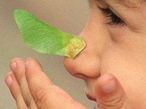 Weißt Du noch, wie es an Deiner Nase gekribbelt hat, wenn Du ganz nah an den Fernseher gerückt bist?