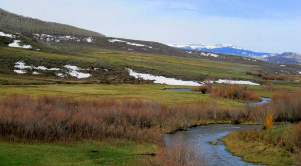 A fourth-generation Routt County ranching family has finalized a conservation easement on their 656-acre ranch. The Stankos conserved 141 acres of their ranch in 2000; the central 152 acres were conserved in 2014. And with the help of the Colorado Cattlemen's Agricultural Land Trust, the final 363-acres will be protected.