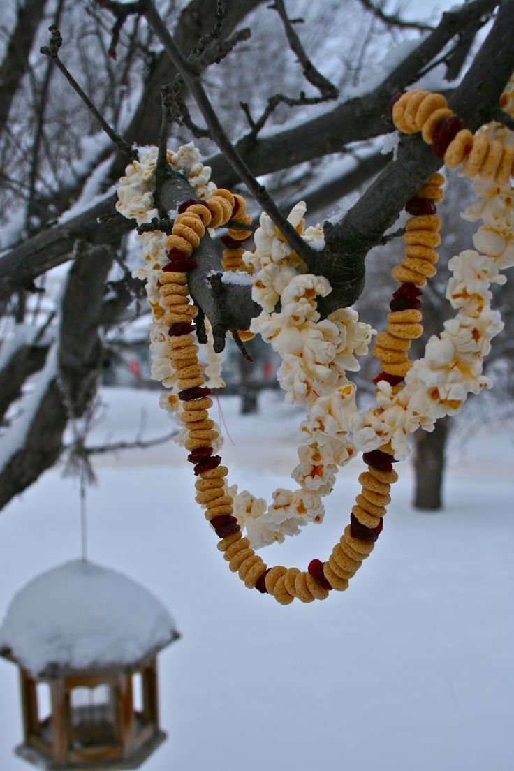 pagan yule | Dec-Photo Pagan Yule