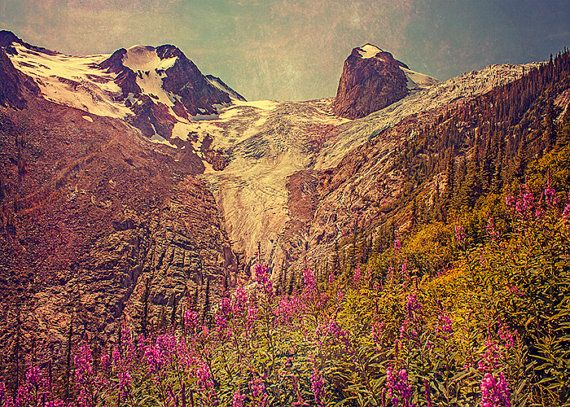 Mountain Photography, Rocky Mountains, Landscape Image, Vintage Decor, Wild Flowers, Rustic, Dreamy Texture, Warm Fall Colors, Pink, Nature