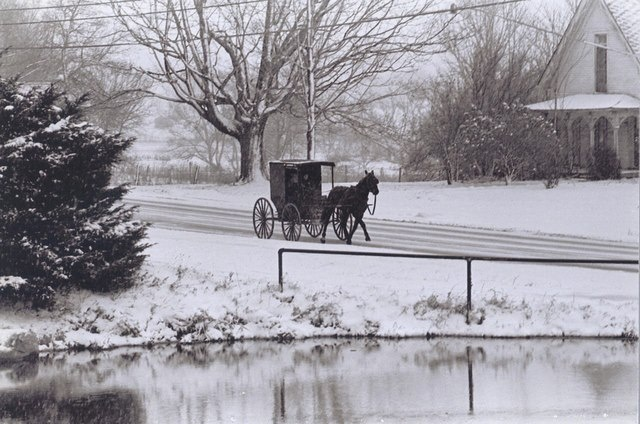 Another cold dayAmish Life, Amish Country, Amish Winter, Amazing Amish, Amish Heritage, Amish Pictures, Amish Christmas, Amish Buggywint, Amish Simple
