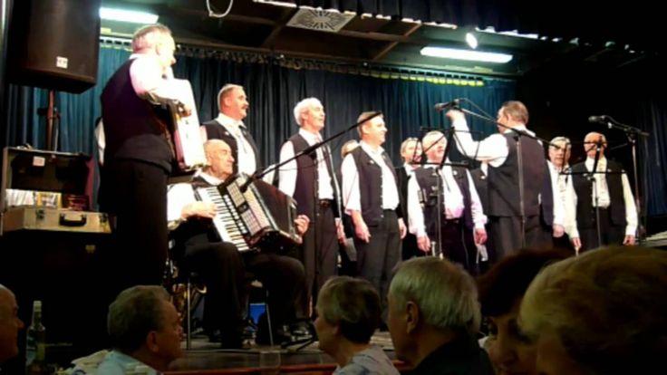 Schorokscharer Männerchor Liederkranz aus Wien