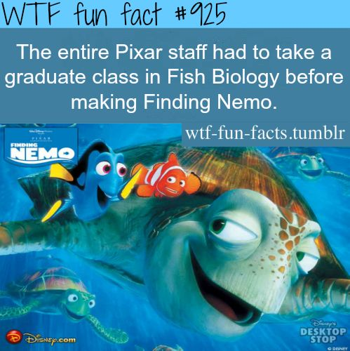 And yet they conveniently left out key facts about the life cycle of clownfish...HAHAHAHAHA.