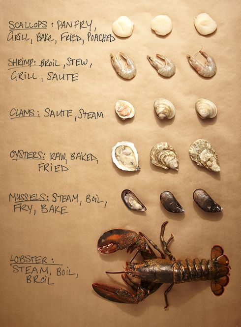 Use this shellfish cheat sheet to help determine what's fresh next time you're at the seafood counter.