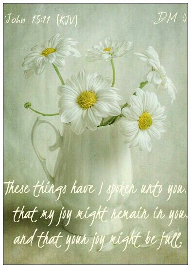 'John 15:11(KJV) These things have I (Jesus) spoken unto you, that my joy might remain in you, and that your joy might be full. - {DM}