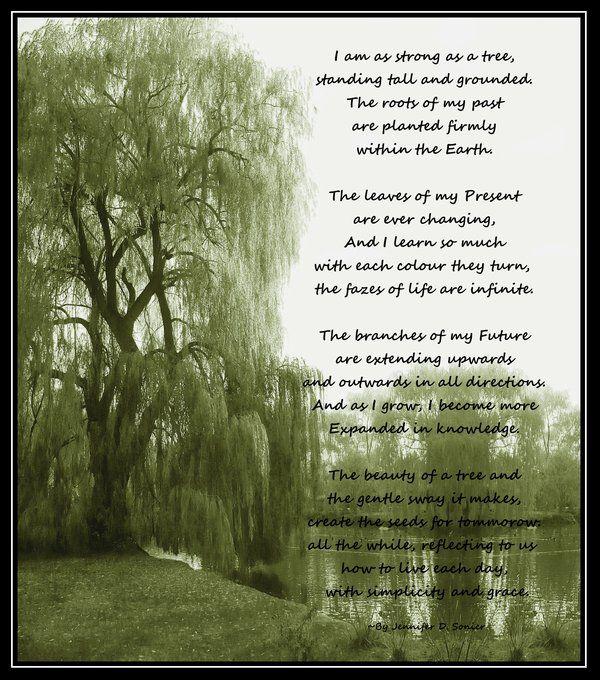 Hallmark Tree of Life Poem | Like a Tree Poem by ...