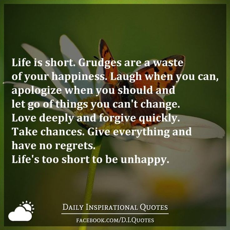 Quotes About Things You Can T Have: Life Is Short. Grudges Are A Waste Of Your Happiness
