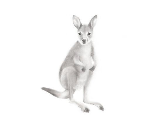 les 25 meilleures idées de la catégorie kangourou dessin sur