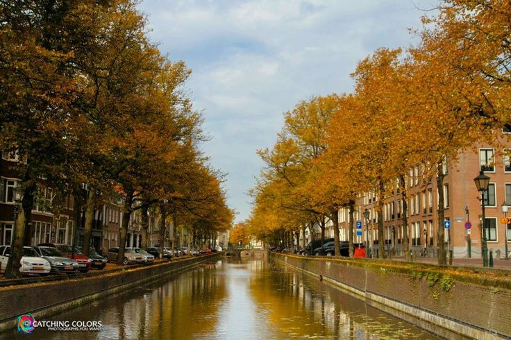 Canal The Hague