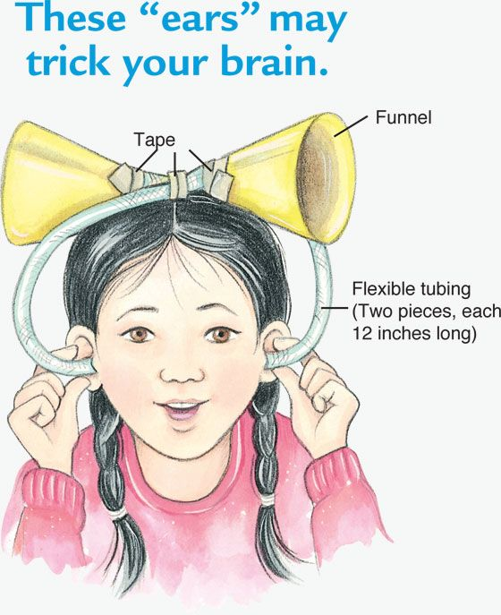Turn Sounds Around: Trick your brain with this kids science experiment!