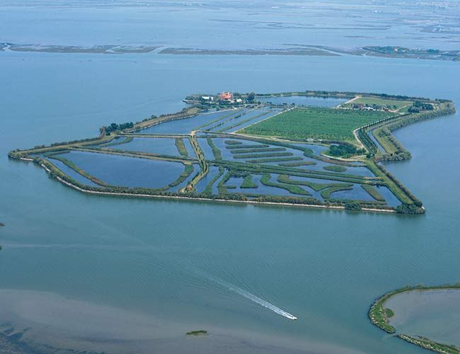 Isola Santa Cristina Venice, Italy --- Located with the Venetian Lagoon, Isola Santa Cristina is the private island to practice selfsufficiency. Home to a small farm holding, a fishery and an array of shellfish aquaculture sites, there's no danger of going hungry on this Italian island.