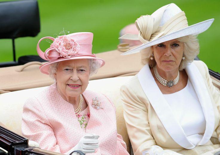 335 best images about races hats fascinators race wear
