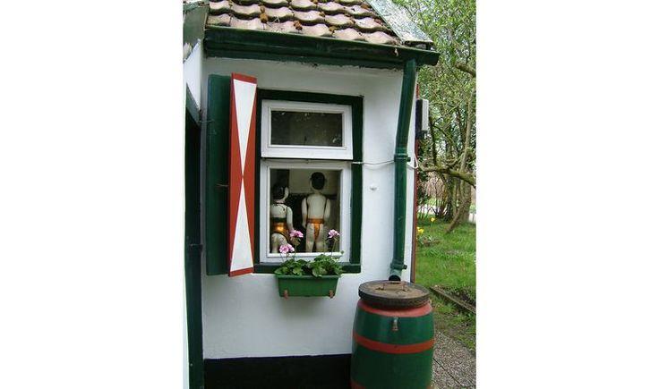 Natuurhuisje 23818 - vakantiehuis in Veelerveen