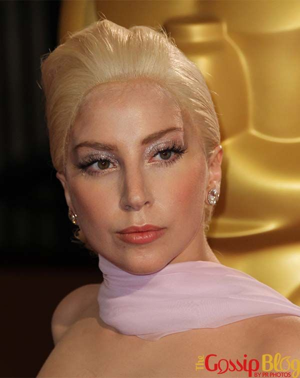 Lady Gaga's Oscars 2014 Wig: Awful or Not That Bad?