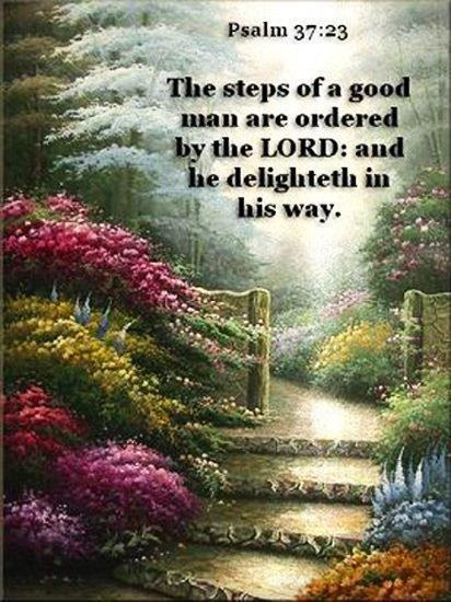 The steps of a good man are ordered by the Lord; and he delighteth in his way. #Psalm 37:23  #BibleQuotes