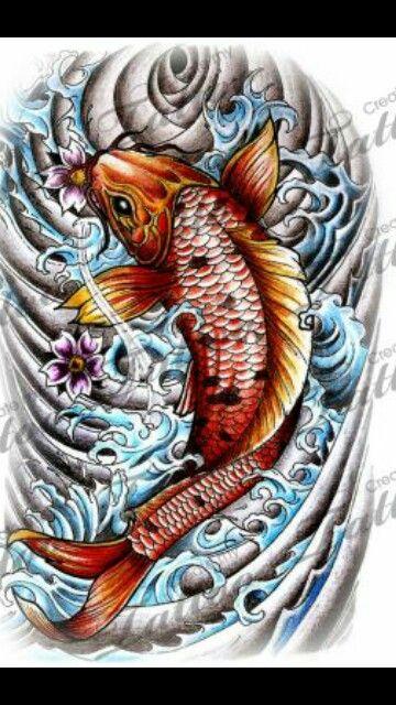 a coy fish