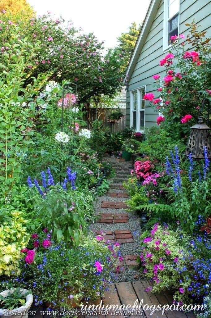 синие травы пейзажного стиля, растения, ландшафтный дизайн,