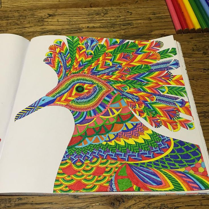 75 Best Tropical Wonderland Coloring Book Completed Pages Images
