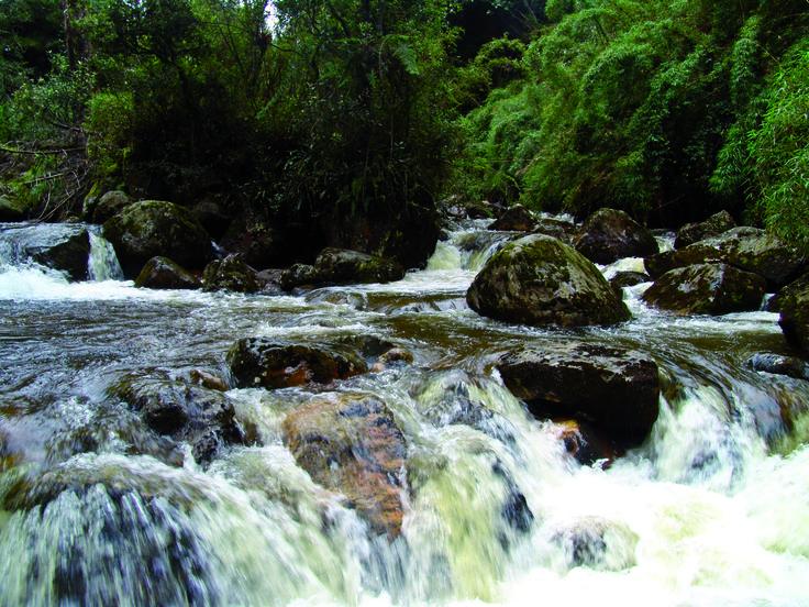 El río Fucha nace en el páramo de cruz verde y entra a la ciudad por San Cristóbal para luego  recorrer 21,7 kilómetros a lo largo de otras 11 localidades de la ciudad