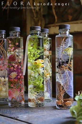 特別講座「植物標本ハーバリウムを作ろう!」   フローラのガーデニング・園芸作業日記