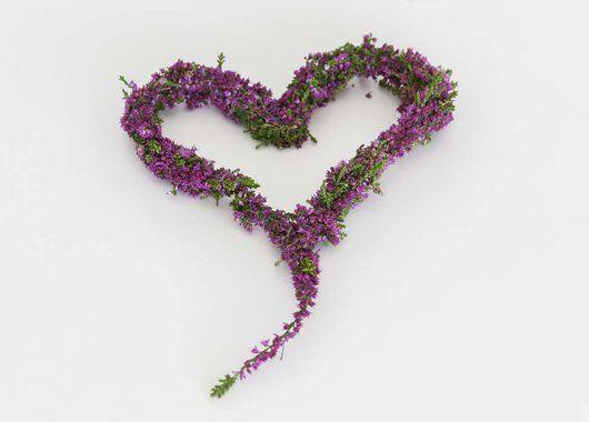 Så enkelt kan du lage et nydelig hjerte med høstens lyngplanter.
