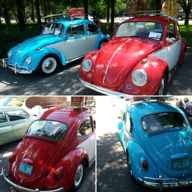 Not normally a Bug guy but these 2 we're cool red one was