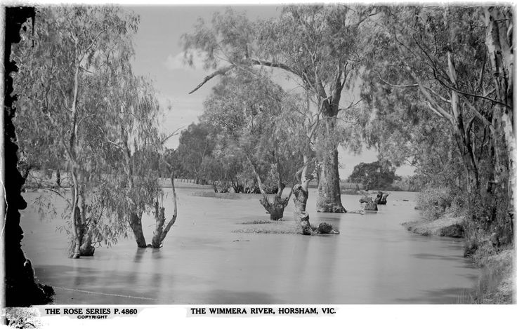 High levels in the Wimmera River, c1920-1954. Photo: SLV.