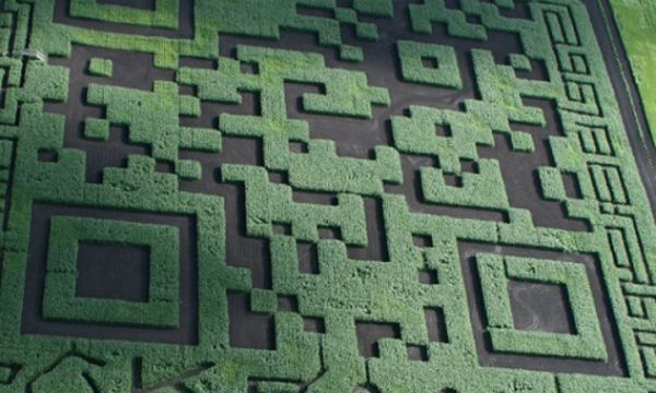 World's biggest QR Code. 29,000sqm carveed into a field of corn.