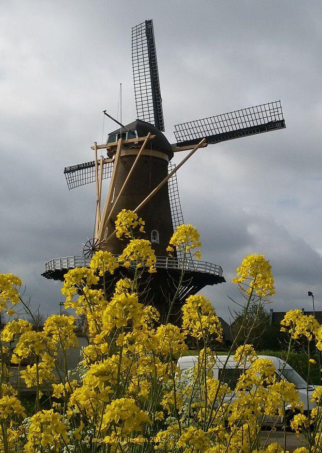 The Mill Nooit Volmaakt...