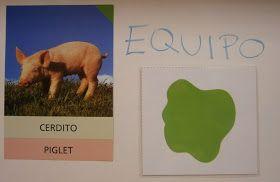 El equipo verde escogió, entre todos los animales de granja, EL CERDO . Así que lo primero de todo, este equipo también dibujo un CER...