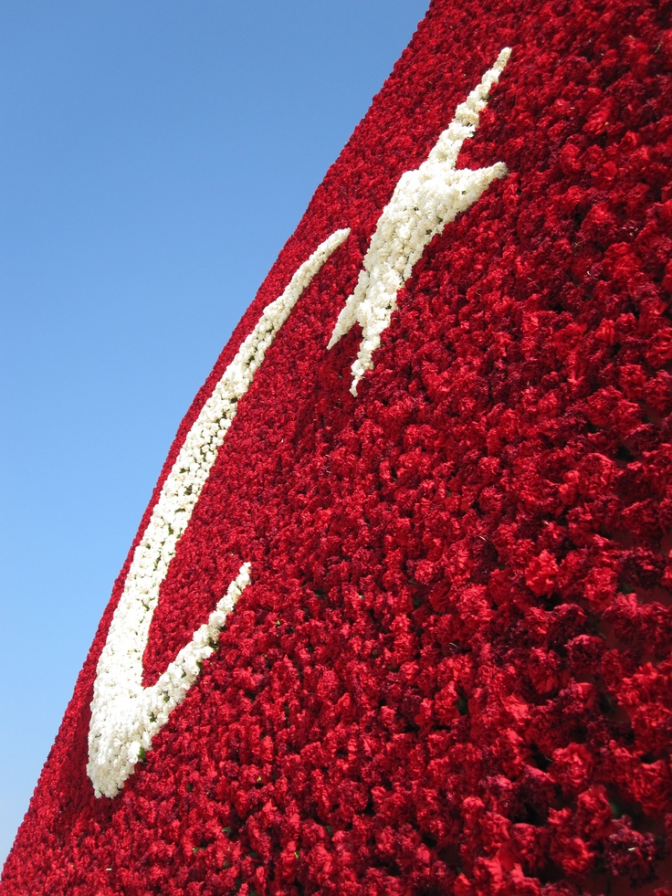 Floral Turkish Flag at the Ataturk Tomb in Ankarra, Turkey