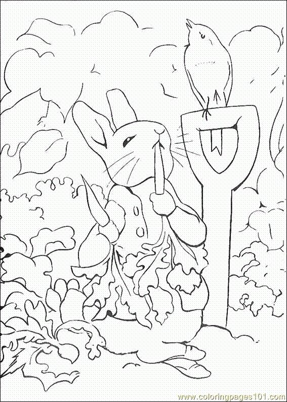 Peter Rabbit colouring pages.