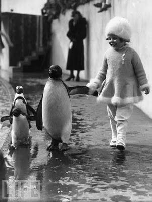 *: Little Girls, Hold Hands, Friends, Walks, London Zoos, Girls Hold, Penguins, Photography, Animal