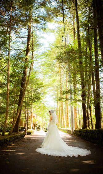 白樺の森でロケーションフォト撮影♡ 軽井沢での結婚式のアイデア一覧。ウェディング・ブライダルの参考に。