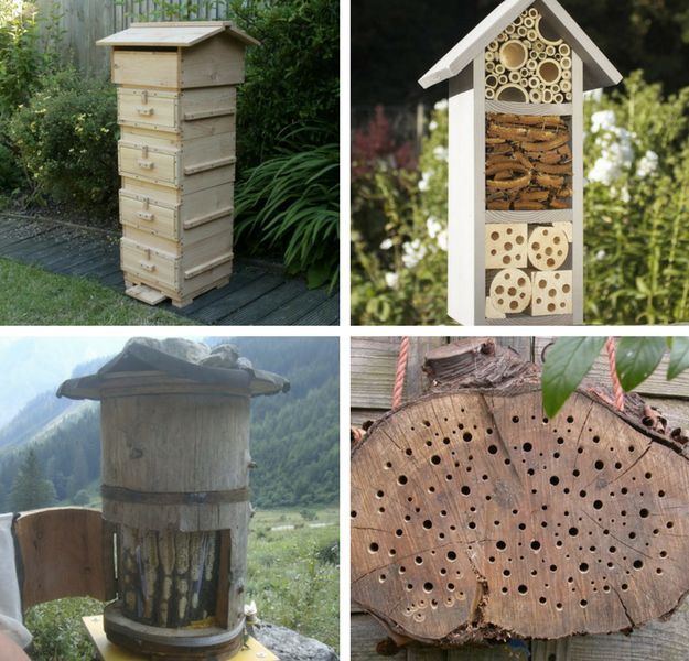 Best Bee Hive Plans | Homesteading Hacks Every Homesteader Should Know